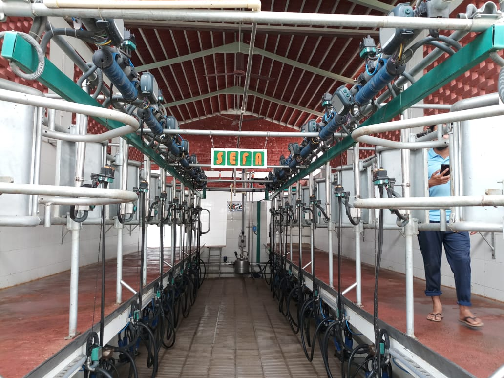 2X8 Automatic milking parlor 2