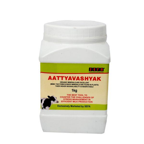 Atyavsyak